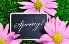 Best Spring Events on Long Island